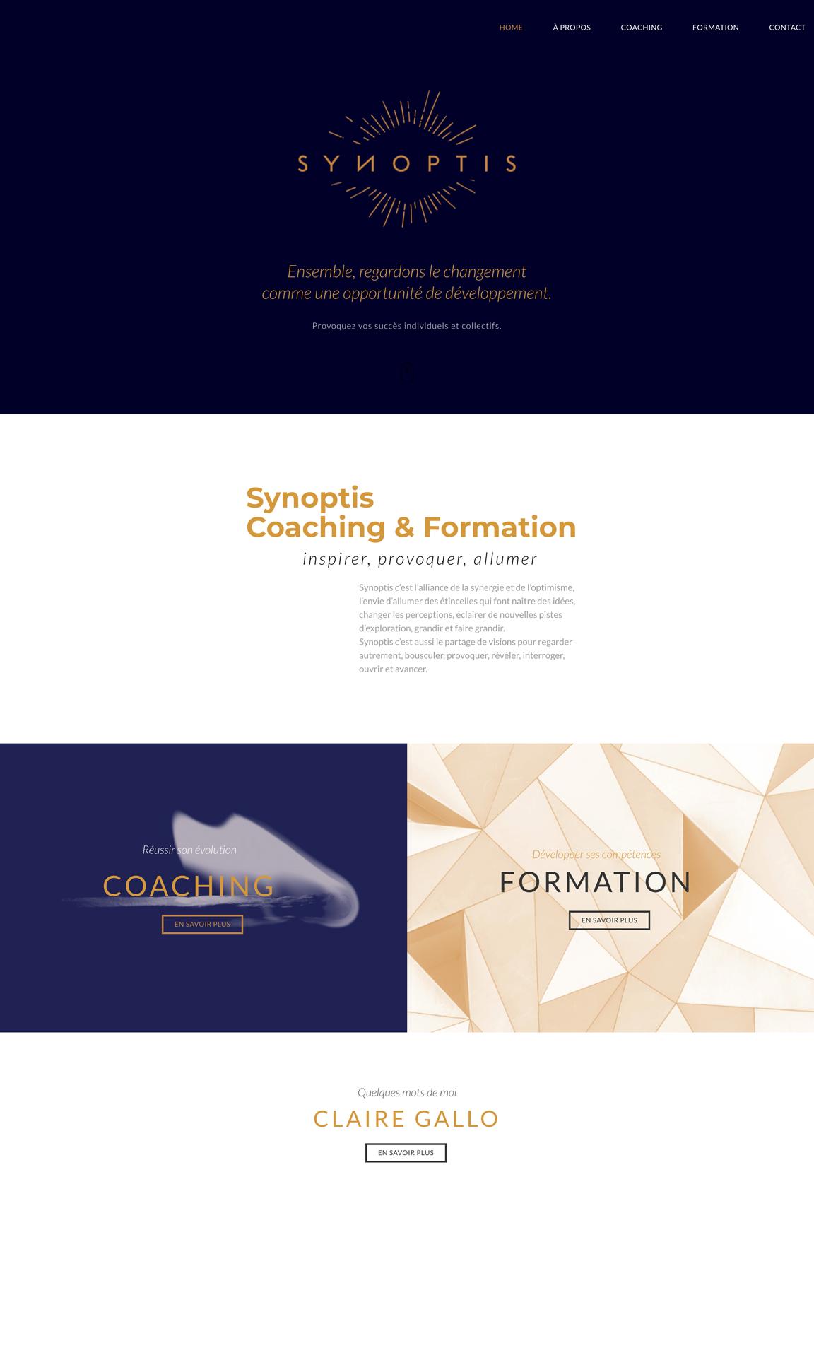 Synoptis Un site développé par BobandCo